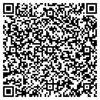 QR-код с контактной информацией организации Светильники, ЧП