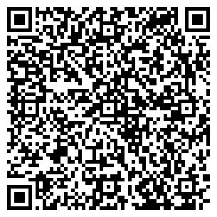 QR-код с контактной информацией организации 100 Балов, ЧП