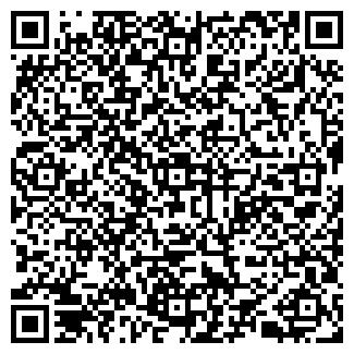 """QR-код с контактной информацией организации ип """"Nur-3"""""""