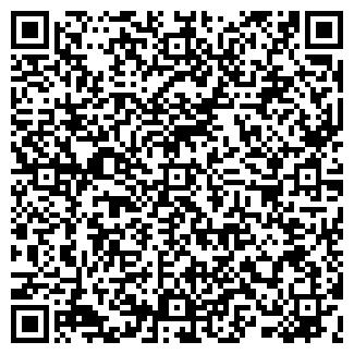 QR-код с контактной информацией организации Цой Н., ИП