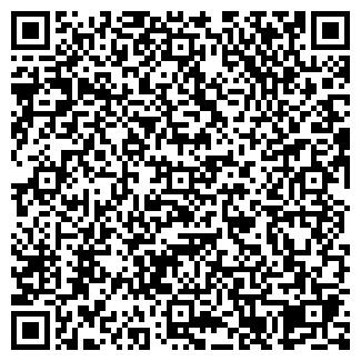 QR-код с контактной информацией организации Дата Свет, ТОО