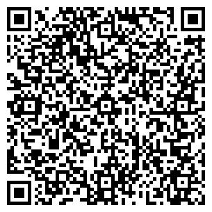QR-код с контактной информацией организации НИИ Шторм, ГП