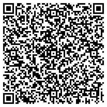 QR-код с контактной информацией организации Точка света, ООО