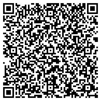 """QR-код с контактной информацией организации Тоо """"Bagira"""""""