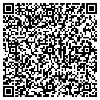 QR-код с контактной информацией организации БИНГО, ООО