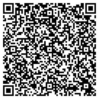 QR-код с контактной информацией организации Колесико, ЧП