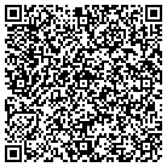 QR-код с контактной информацией организации Нано-Сити, ООО