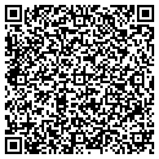 QR-код с контактной информацией организации Msln Foam