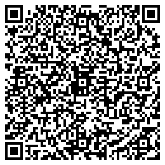 QR-код с контактной информацией организации Mobileshop