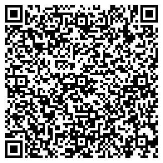 QR-код с контактной информацией организации Теплоточка, ЧП