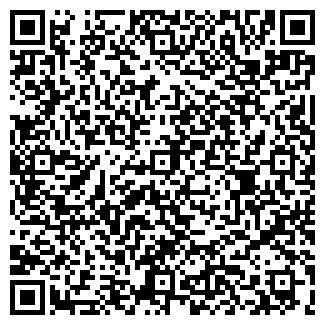 QR-код с контактной информацией организации Тикич, ЧП