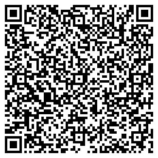"""QR-код с контактной информацией организации Другая """"Black Wolf"""""""
