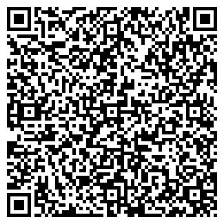 QR-код с контактной информацией организации Субъект предпринимательской деятельности Viplight