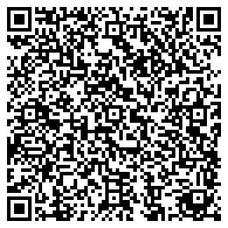 QR-код с контактной информацией организации Picnicmaker, ЧП