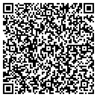 QR-код с контактной информацией организации Стройсвет, ЧП
