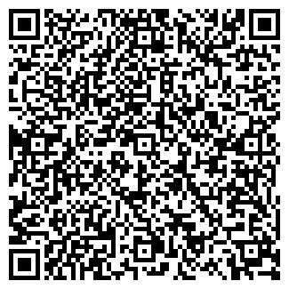 QR-код с контактной информацией организации ВМ, Фирма