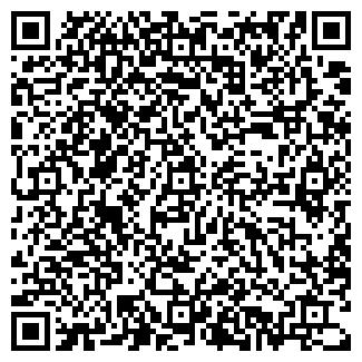 QR-код с контактной информацией организации Шпилевой, ЧП