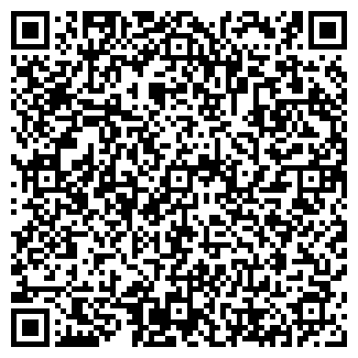 QR-код с контактной информацией организации ИП Шопанов С.Ж.