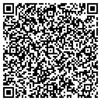 QR-код с контактной информацией организации ИП АвенсисСтрой