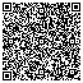 QR-код с контактной информацией организации Субъект предпринимательской деятельности girt