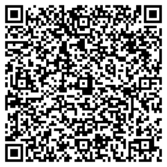 QR-код с контактной информацией организации Свет и Стиль, СПД