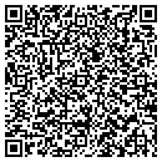 QR-код с контактной информацией организации ПиТиСи, ООО