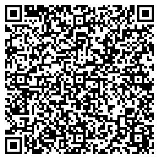 """QR-код с контактной информацией организации ИП """"НУР"""""""