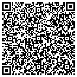 QR-код с контактной информацией организации Mashinca