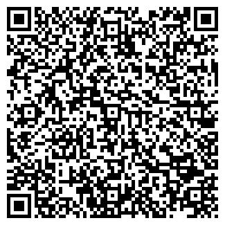 QR-код с контактной информацией организации Другая ИП Павел
