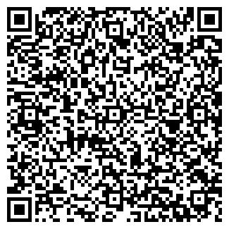 QR-код с контактной информацией организации Бабушкино