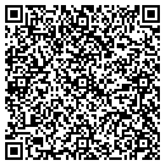 QR-код с контактной информацией организации Гейзер-Дон