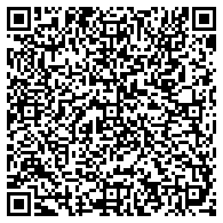 QR-код с контактной информацией организации Алиева, ИП
