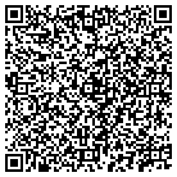 QR-код с контактной информацией организации Ремшина, ЧП