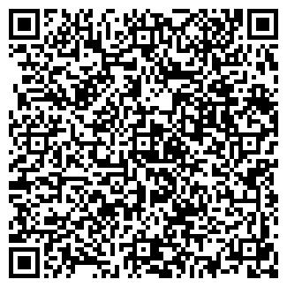 QR-код с контактной информацией организации КИНОТЕАТР МИР