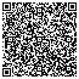 QR-код с контактной информацией организации Волит, ЧП