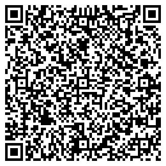 QR-код с контактной информацией организации Летучий, ЧП