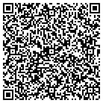 QR-код с контактной информацией организации ИП Далиев Р.Е.