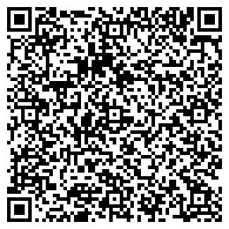 QR-код с контактной информацией организации HOLLYWOOD, ООО