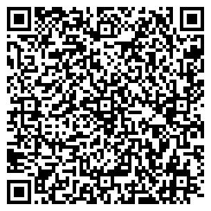 QR-код с контактной информацией организации Новая энергия, ЧП
