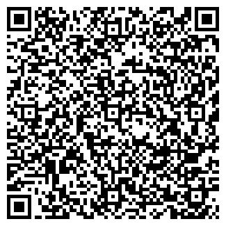 QR-код с контактной информацией организации Фрея, ООО