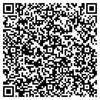 QR-код с контактной информацией организации IP Boronilo