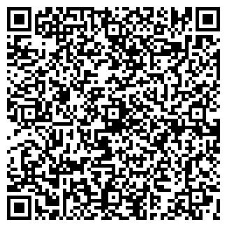 QR-код с контактной информацией организации Майзер, ИП