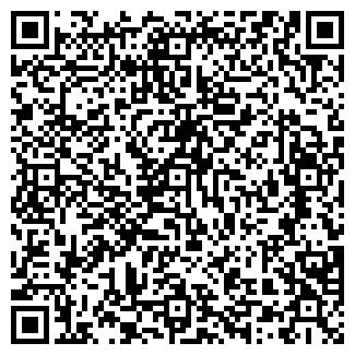 QR-код с контактной информацией организации БИЗНЕС-РИМ, ООО