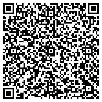 QR-код с контактной информацией организации GREAT GAME, ООО