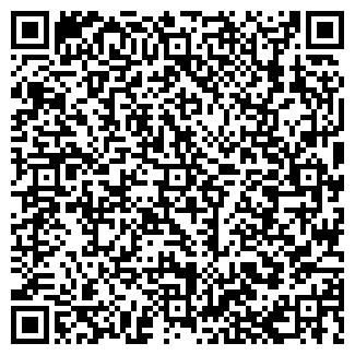 QR-код с контактной информацией организации inAuto, ООО