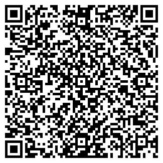 QR-код с контактной информацией организации Демис