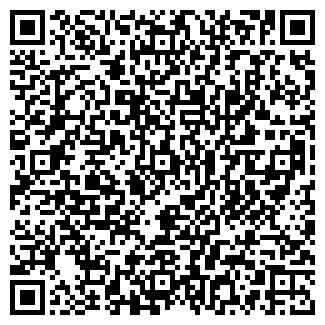 QR-код с контактной информацией организации Субъект предпринимательской деятельности Автомастер