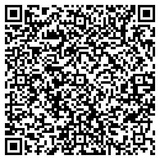 QR-код с контактной информацией организации Дымоходы, ЧП