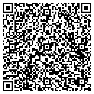 QR-код с контактной информацией организации ИП Ли Д. Л.