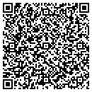 QR-код с контактной информацией организации Dom-Karcher